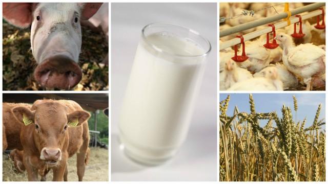 29 marca odbyło się posiedzenie zespołu ekspertów ds. prognozowania cen podstawowych produktów rolniczych