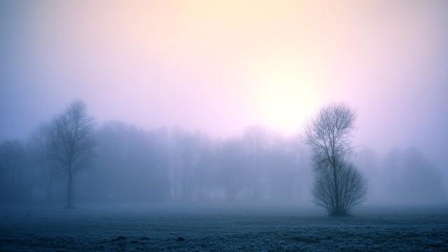Tradycji stanie się zadość. Tegoroczne Boże Narodzenie podobnie jak poprzednie, będzie ciepłe, pochmurne i deszczowe. Według prognozy dr. Marka Błasia z Zakładu Klimatologii i Ochrony Atmosfery Uniwersytetu Wrocławskiego, na zimową aurę będziemy musieli poczekać do przyszłego roku.