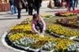 Kolorowe i kwitnące Szepietowo, czyli Wiosenne Targi Ogrodnicze
