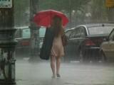 Susza i ulewne deszcze to skutki zmian klimatu czy zabetonowania miast? Do ekstremalnych zjawisk pogodowych musimy się przyzwyczaić