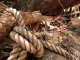 Po kłótni z żoną wziął sznur i poszedł do lasu