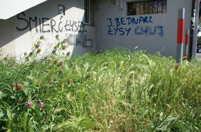 Napisy na budynku przy ul. Stachiewicza