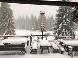 Kiedy spadnie śnieg? W górach jest już biało. Na Hali Lipowskiej leży kilkanaście cm białego puchu