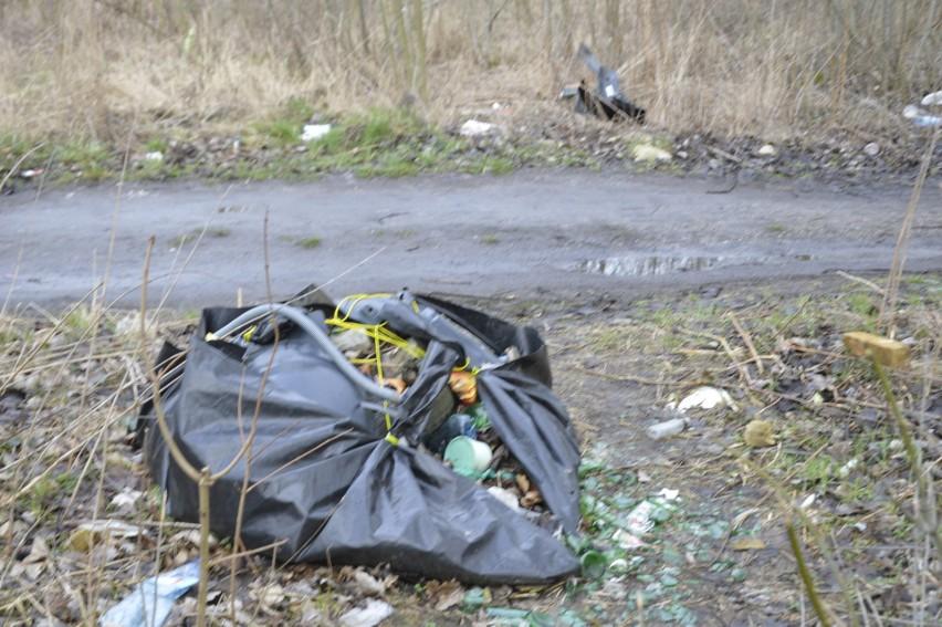 GORZÓW WIELKOPOLSKI W niedzielę wielka akcja sprzątania na...