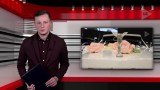 Najważniejsze wydarzenia z woj. śląskiego PROGRAM TyDZień 21.02.2020 WIDEO Prezentuje Bartosz Wojsa