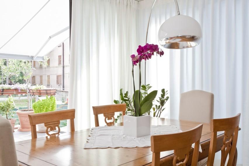 Żeby znaleźć atrakcyjne mieszkanie do wynajęcia w Katowicach, wcale nie trzeba dużo szukać.