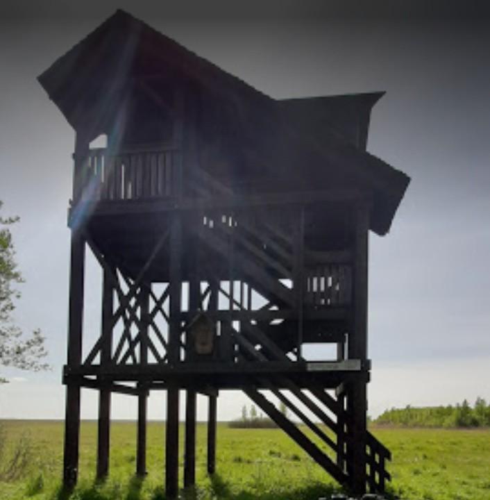 """Wieża widokowa """"Bagno Ławki"""""""