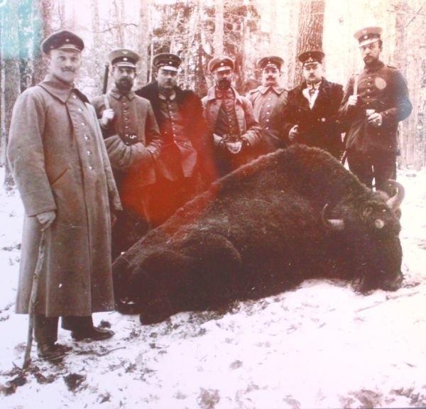 Niemcy na brak rozrywek w regionie nie narzekali. Tu zdjęcie z polowania w Puszczy Białowieskiej. Okupanci nie wiedzieli, że tworzą niezwykły dokument historyczny Podlasia.