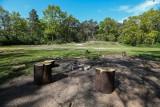 Rozebrany plac w Parku Leśnym Dąbie. Miasto planuje sadzić drzewa. Na terenach zielonych, które zdegradował człowiek