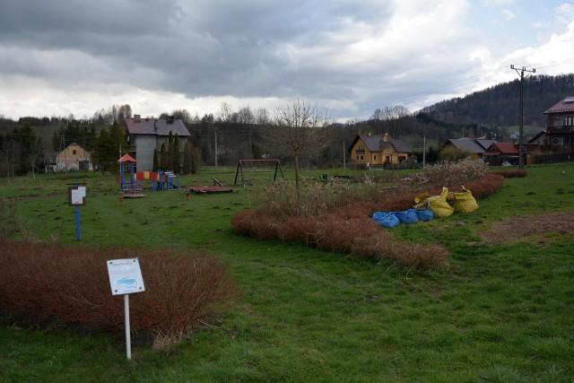 Trwają prace w parku gminnym w Załużu. Na skwerze powstanie ogród sensoryczny.