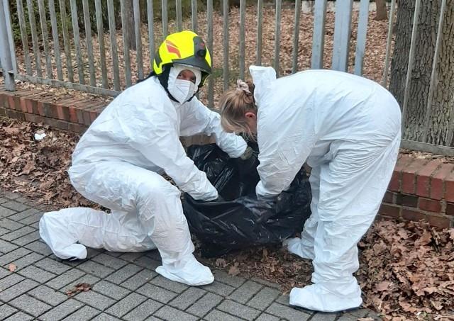 Skwierzyna lipiec br. - Akcja usuwania zwłok małego dziczka. Podczas akcji strażacy muszą być w specjalnych kombinezonach