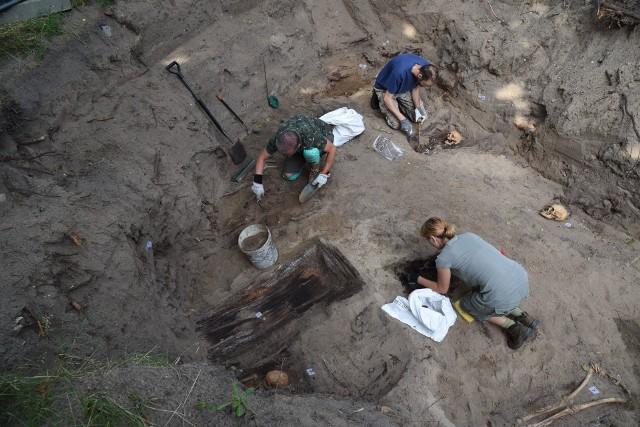 Prace archeologiczne w Nowym Porcie. Odnaleziono szkielety w miejscu dawnego cmentarza