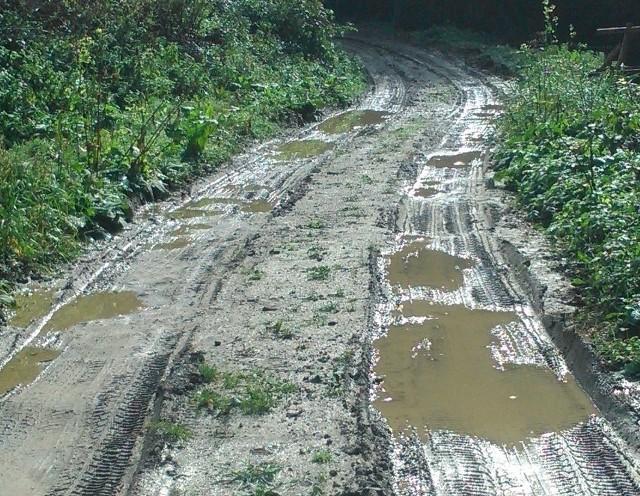Mieszkaniec Huty Brzuskiej od kilku lat stara się wywalczyć remont drogi prowadzącej do jego domu - wszystkie drogi wokół wyremontowali a tę jedną zostawili - twierdzi. Gmina przygotowuje się do remontu uciążliwej drogi.