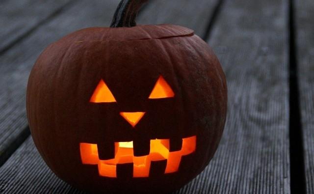 Jak Zrobić Lampion Z Dyni Na Halloween Zdjęcia Dziennik