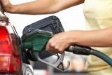 Ceny paliw w regionie. Sprawdź, gdzie najtaniej