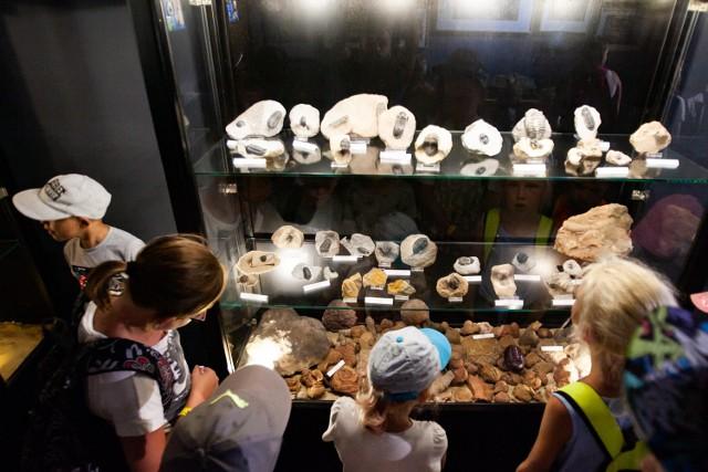 Dzieci, które zaprosilismy do JuraParku w Solcu Kujawskim, miały m.in. okazję zobaczyć eksponaty w muzeum.