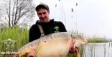Rybnik. Gigantyczny karp złowiony w wodach Zalewu Rybnickiego. Ma ponad 30 kilogramów