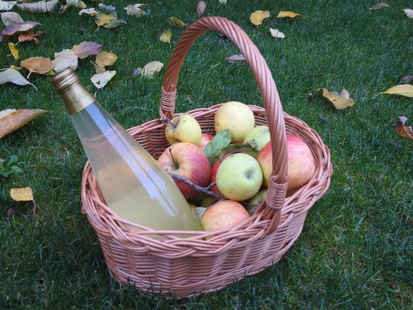 Ocet Jabłkowy Dietetycznym Hitem Właściwości Zastosowanie