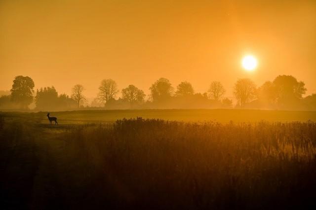KATEGORIA: Fotografia artystyczna, wyróżnienie honorowe, Artur Georgiew – Spotkanie w plenerze – zachód słońca na polach w Żabiej Woli