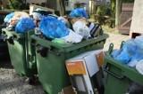 Wrocław: Przepełnione pojemniki? Ekosystem znów ukarał firmy śmieciowe