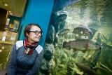 Ryby już pływają! Nowe akwaria w myślęcińskim zoo
