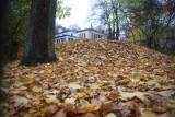 Nadchodzi wyjątkowo ostra zima: 25.10.2021. Prognoza pogody na październik, resztę jesieni i początek przyszłego roku aż do lutego