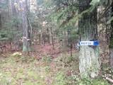 Seryjny morderca w Kołobrzegu? 43-letni Mariusz G. miał sam wskazać gdzie są zwłoki dwóch kolejnych ofiar. To informacja nieoficjalna