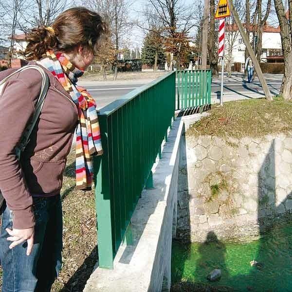 Rzeszów > Zielona woda w Mikośce