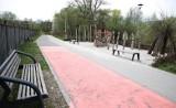 Kraków. Park dla mieszkańców nad Wilgą. Szykuje się dewastacja dzikiej przyrody? [ZDJĘCIA]