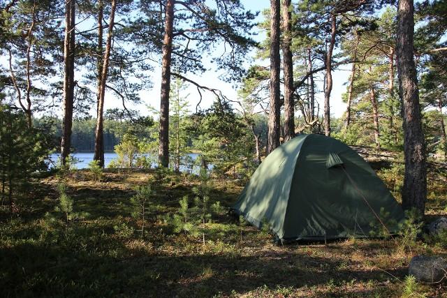 Nocowanie w lesie będzie możliwe w wyznaczonych do tego miejscach na terenie Lasów Państwowych.Zobacz kolejne zdjęcia. Przesuwaj zdjęcia w prawo - naciśnij strzałkę lub przycisk NASTĘPNE