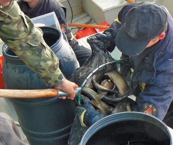 Wciągu najbliższych pięciu lat rybacy będą mieli do wykorzystania znaczne sumy.