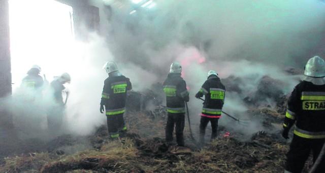 Strażacy ratowali, co się da. Najważniejsze, że nikt w tym pożarze nie ucierpiał