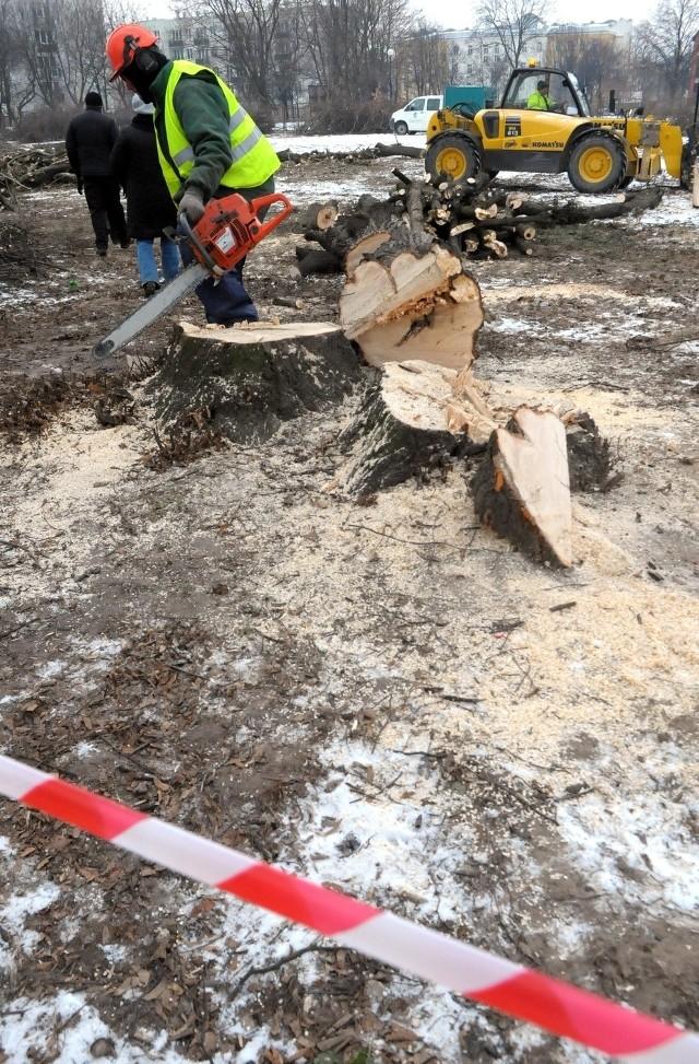 Wycinka drzew przy Walecznych: Mieszkańcy skarżą się na prezydenta