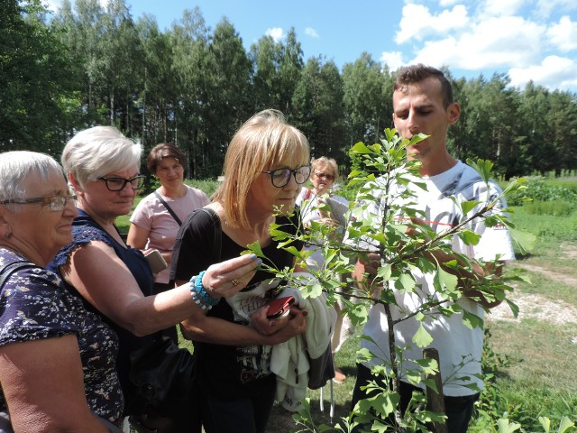 Powiat ostrowski. Warsztaty herbaciane zorganizowane przez LGD Zielone Sioło. Zobacz, co zobaczyli w Korycinach.
