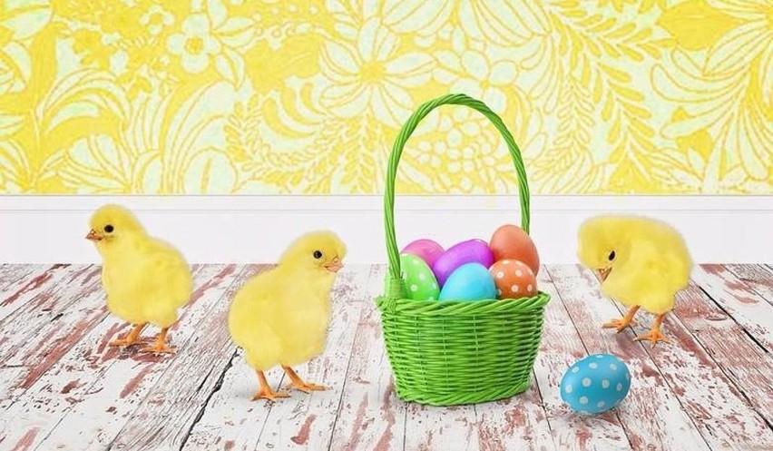 Życzenia i wierszyki wielkanocne. Życzenia na Wielkanoc....