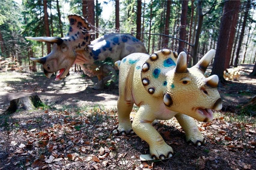 Park dinozaurów w Nowinach Wielkich...