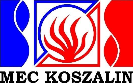 Koszalińska spółka ciepłownicza została doceniona za konsekwentnie prowadzone działania w dziedzinie informatyki.