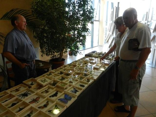 Józef Gosek (z prawej) na wystawę przyszedł z żoną Krystyną. Przy okazji zakupił chrząszcza.
