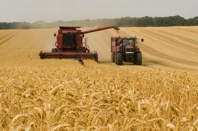 Zobaczcie 30 ogłoszeń maszyn rolniczych na sprzedaż z portalu olx.pl. Przedział cenowy obejmuje 400 złotych do 5000 zł. Zobacz najnowsze oferty z cenami i zdjęciami.
