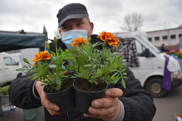 Na ryneczku można też kupić kwiaty do posadzenia w ogrodzie lub na balkonie.