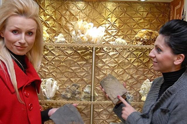 W muzeum można podziwiać m.in. minerały i skamieniałości.