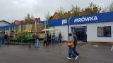 """""""Mrówka"""" w Opatowie już otwarta. To 220 sklep sieci w Polsce [ZDJĘCIA]"""