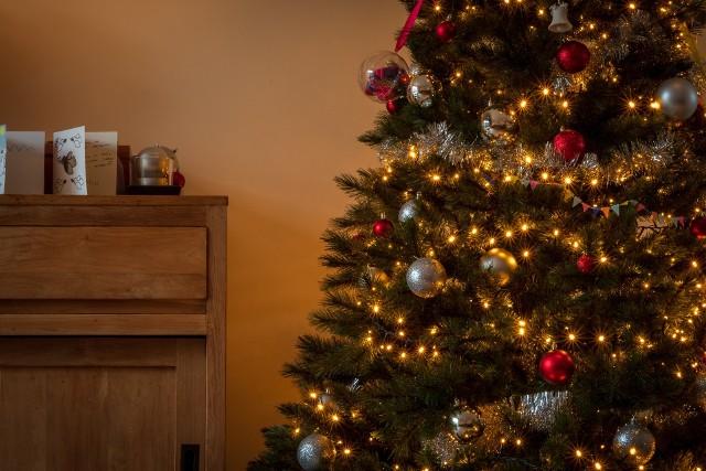 Choinka udekorowana bombkami i ozdobami to jeden z symboli towarzyszący świętom Bożego Narodzenia