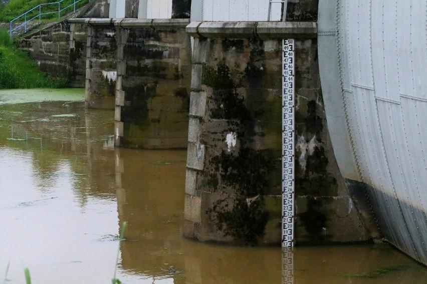 Rzeki Widawa i Oława wzbierają. Grozi nam powódź?