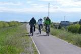 Rozbudowa Wiślanej Trasy Rowerowej. Z Gdańska przez Sobieszewo, Cedry Wielkie do Tczewa? Wszystko na to wskazuje