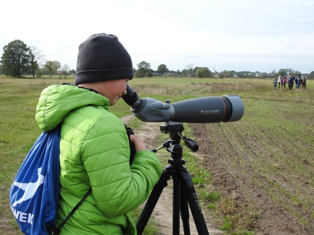W ramach Europejskich Dni Ptaków młodzi obserwatorzy z gminy Małkinia Górna policzyli, ile ich jest