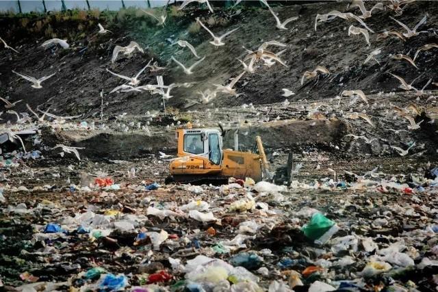 Śmierdzące inwestycje pod lupą ministerstwa środowiska. Nowy projekt rządu - inwestycje uciążliwe zapachowo dostosowane do planu miejscowego