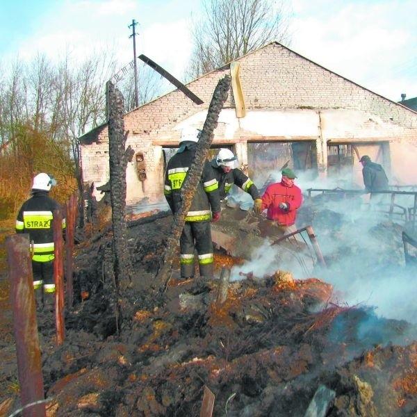 Wczoraj na pogorzelisku pracowali strażacy i pracownicy gospodarstwa rolnego. Dogaszanie trwało cały dzień.
