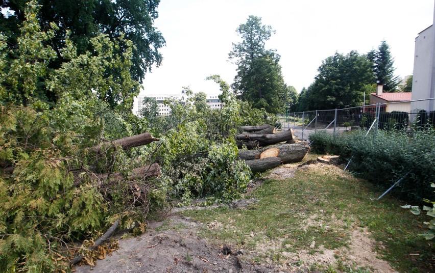 Duża wycinka drzew przy ulicy Towarnickiego w Rzeszowie....