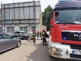 Pożar jaguara w Łodzi. Co było przyczyną? ZDJĘCIA
